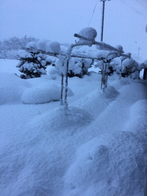 大雪の四日市