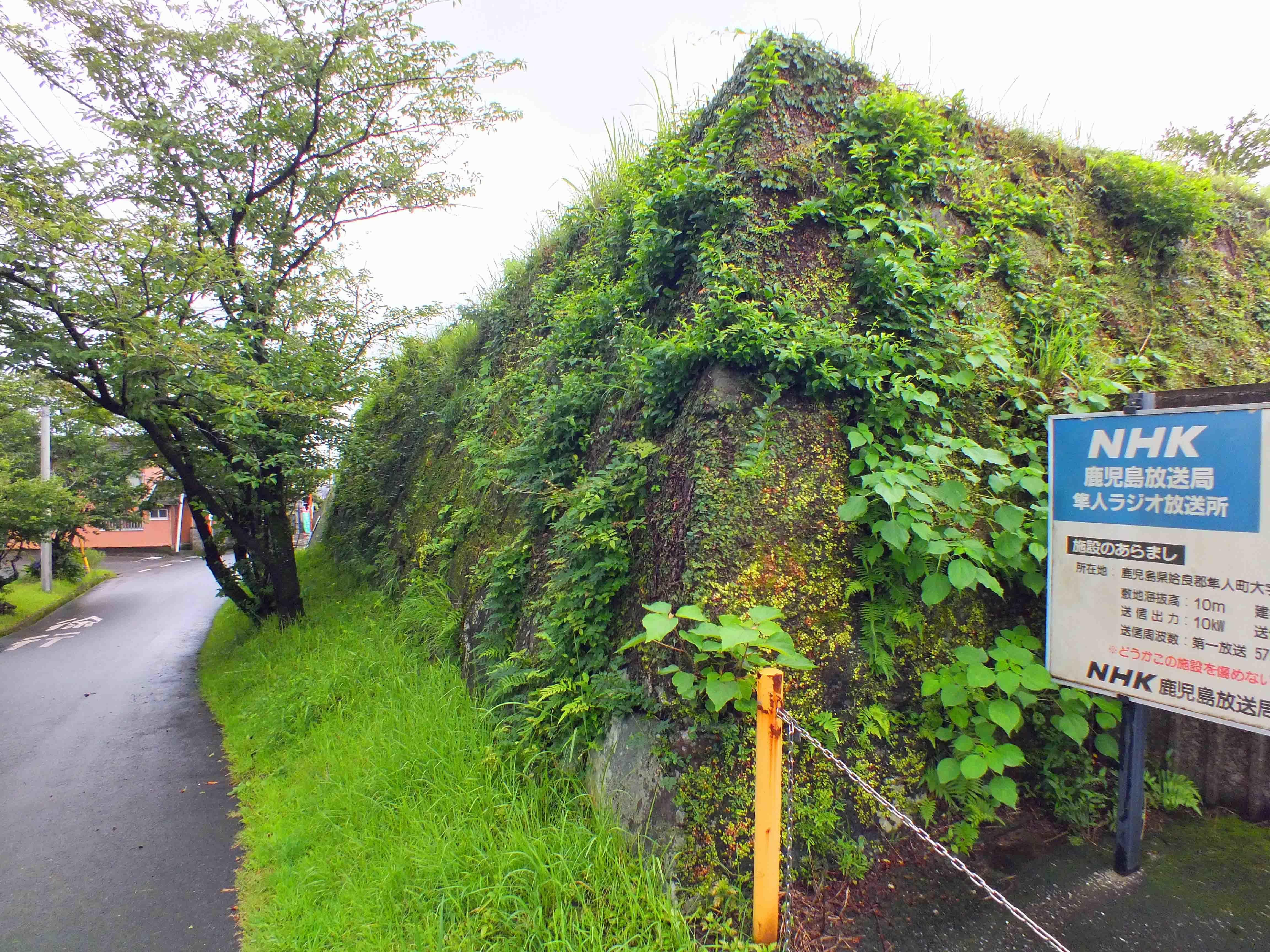 富隈城 石垣1