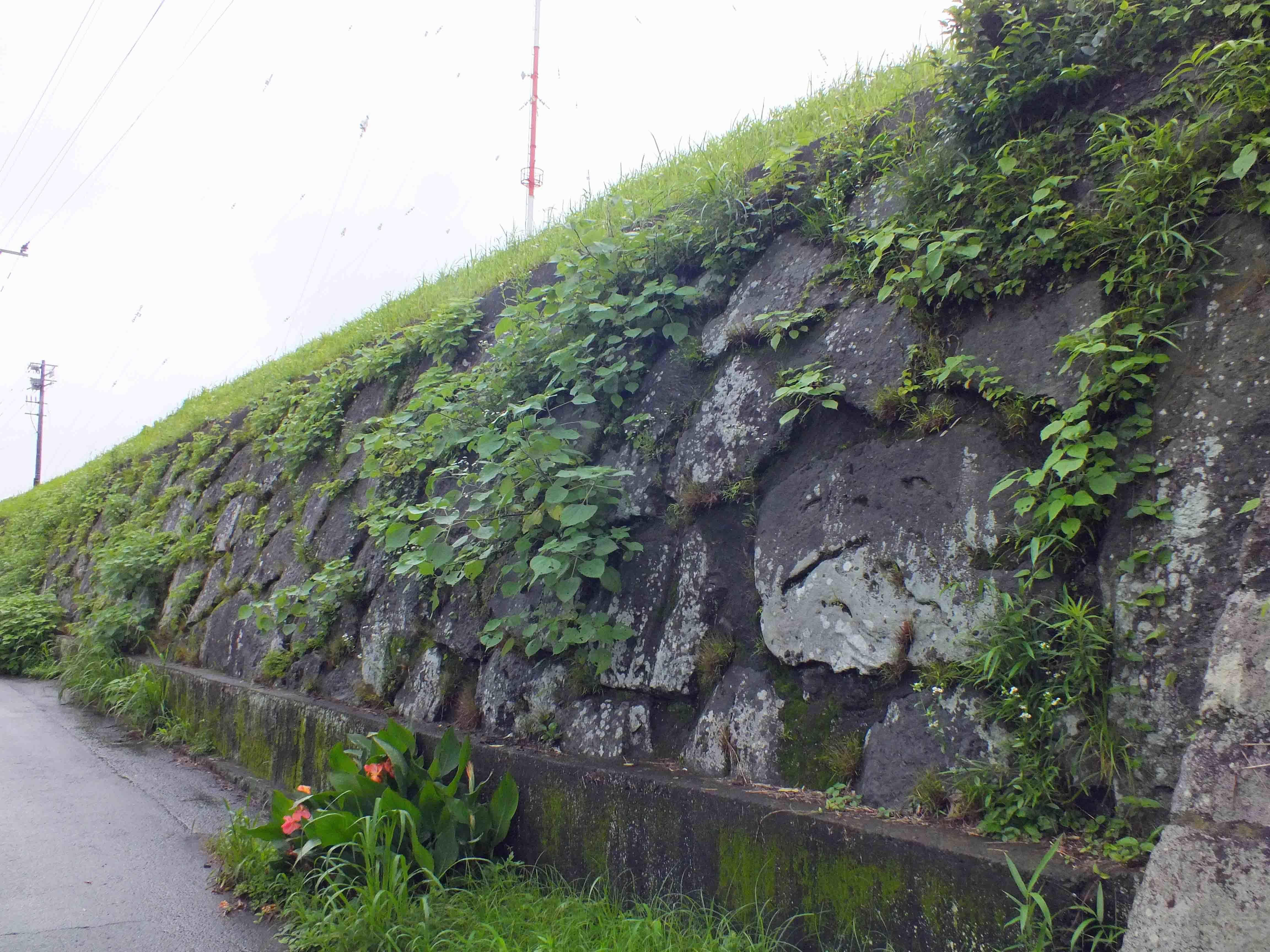 富隈城 石垣2
