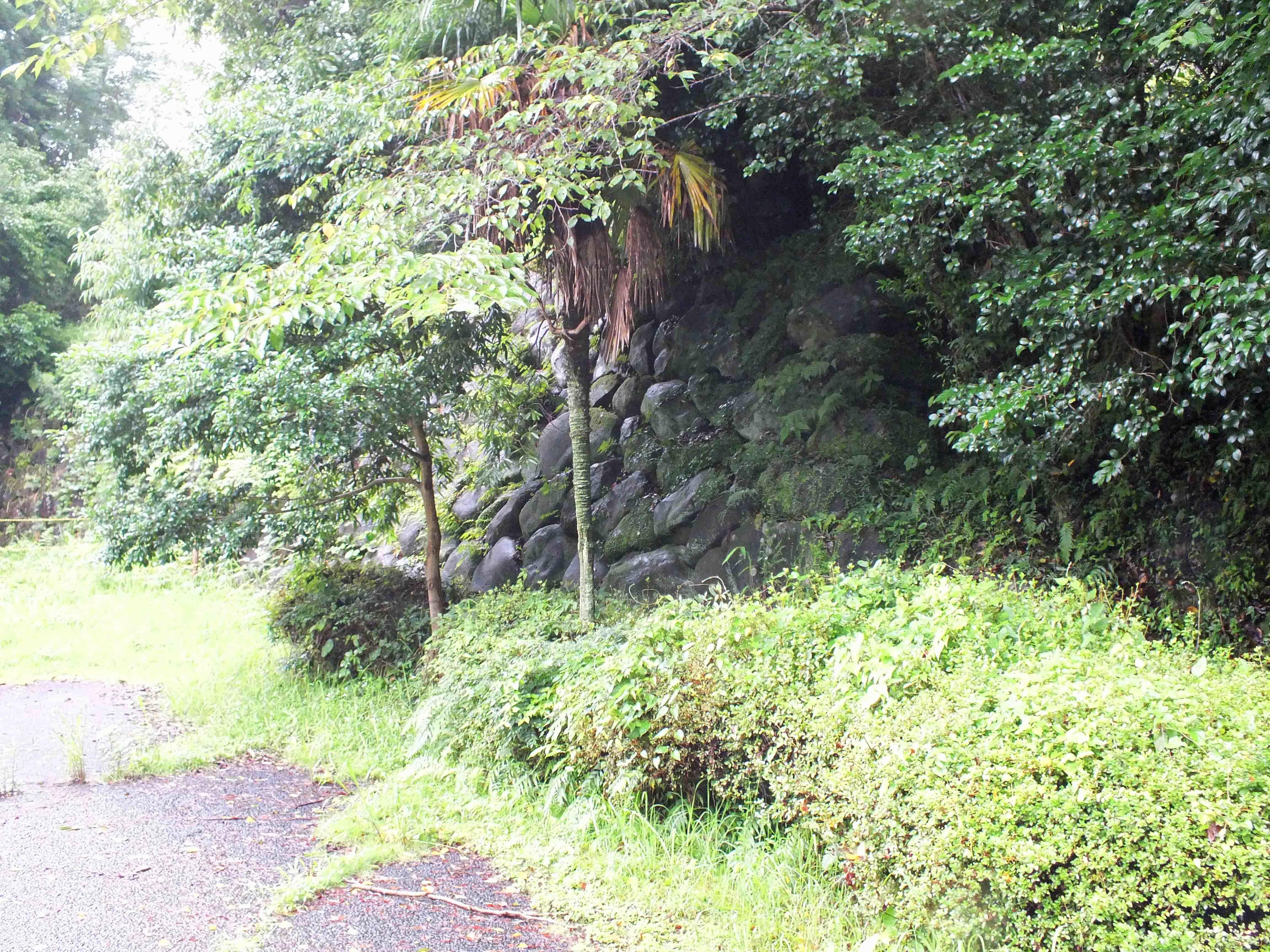 松尾城 本丸の石垣