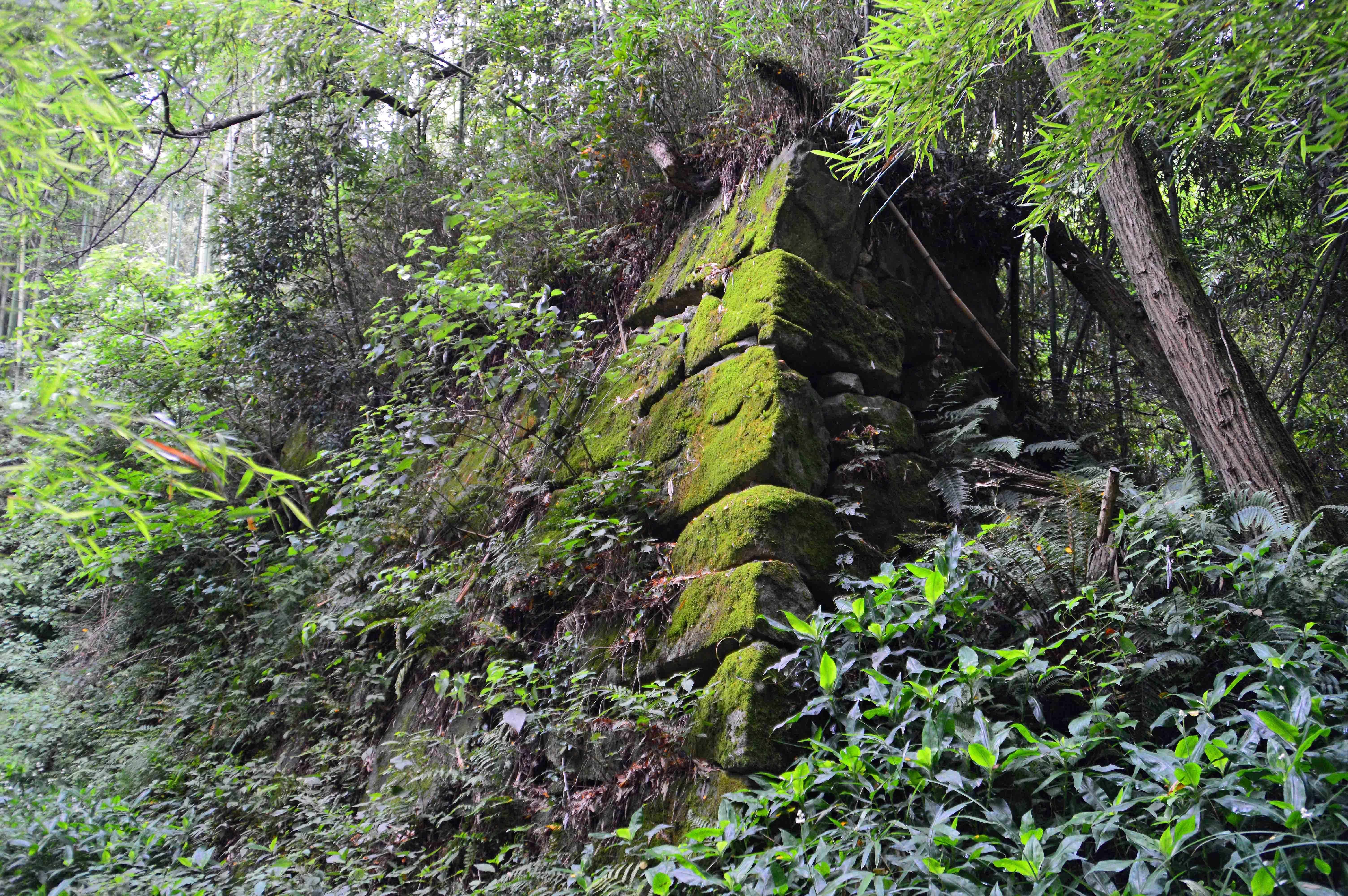 八幡山館 石垣