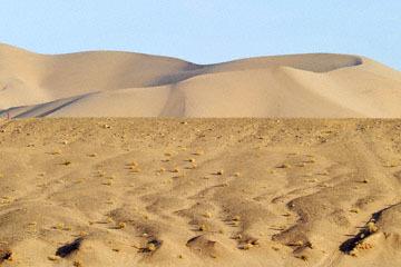 blog 6 Mojave to Death Valley, 127W-190W Dumont Dunes, CA 2_DSC5809-4.3.16.jpg