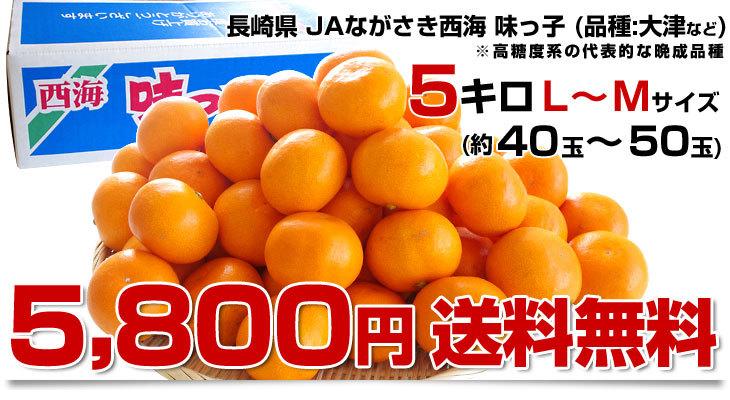 d_orange280_00f.jpg